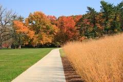 Autumn at park Stock Photo