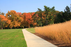 Autumn at park Royalty Free Stock Photography