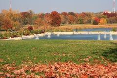 Autumn at park Stock Image