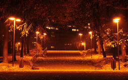 Autumn in park. Park autumn alley lighted by warm lantern posts and ending with two rows of steps. On each side of the alley the grass is covered with dead Stock Photo
