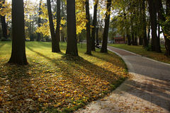 Autumn park. Tsaritsino park in the autumn. Yellow leaves lay on path stock photography
