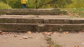Autumn park activity. Playful three years old boy running the stairs outdoors. stock video footage