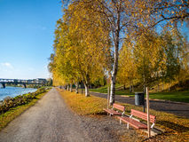 Autumn park alley. Park alley in autumn colors stock image