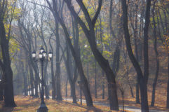 Autumn in the park. Alley in autumn park, lantern, fog Royalty Free Stock Image