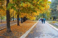 Autumn park avenue. Autumn city park avenue with walking people Royalty Free Stock Photo