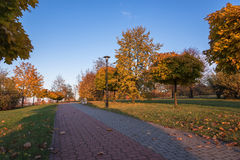 Autumn in the park. Beautiful colors of autumn in the park at sunset Stock Photo