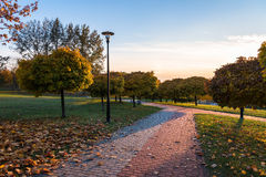 Autumn in the park. Beautiful colors of autumn in the park at sunset Royalty Free Stock Photos