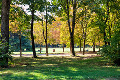 Autumn park. Beautiful autumn park at Florence, Italy Royalty Free Stock Photos