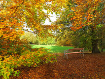 Autumn in park with bench Royalty Free Stock Photography