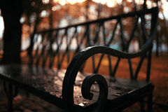 Autumn park with bench Royalty Free Stock Photography