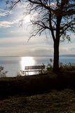 Autumn a park bench at the lake Balaton Stock Photo