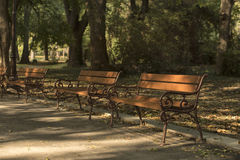 Autumn in park with bench Stock Photography