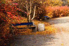 Autumn park bench Royalty Free Stock Photos