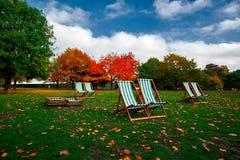 Autumn Park Bench Stock Images