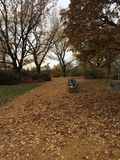 Autumn park benches. Autumn park with benches and fallen leaves Stock Photos