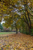 Autumn Park in Berlin Royalty Free Stock Photos