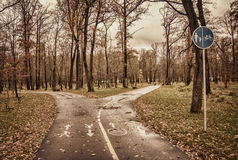 Autumn park, bicycle lane and footpath Royalty Free Stock Photos