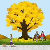 Autumn park big tree -EPS10 Royalty Free Stock Image
