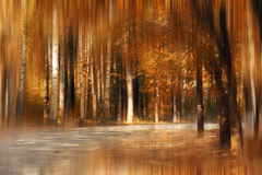Autumn park blur fairy tale Royalty Free Stock Photography
