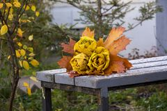 Autumn park, bouquet of roses made from fallen maple leaves lies Stock Image