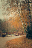Autumn park with bridge Stock Images