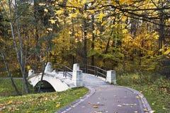 Autumn park with bridge over the ravine. Sunny day Stock Photos
