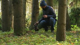 Walking in the Woods. person walks with a dog, plays and squeezes dog`s muzzle. Autumn Park Caucasian person walks with a dog, plays and squeezes dog`s muzzle stock footage