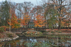 Autumn park in city with reflection Royalty Free Stock Images