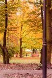 Autumn in the park Royalty Free Stock Photography