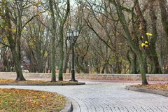 Autumn Park. Colorful foliage in the autumn park. royalty free stock photography