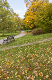 Autumn In The Park. Colorful foliage in the autumn park Kadriorg ,Tallinn City,Estonia Royalty Free Stock Photography