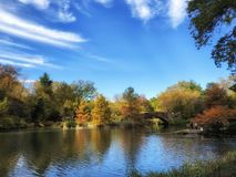 Autumn in the park, colorful trees Stock Photos