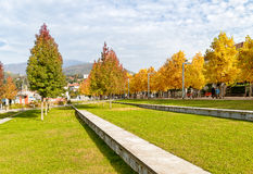 Autumn park with colorful trees. Autumn park with colorful trees on the lakefront of Luino, Varese, Italy royalty free stock photo
