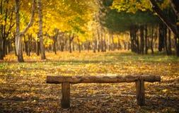 Autumn Park stock photography