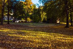 Autumn Park covered with fallen leaves stock photo