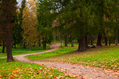 Autumn park in the day Stock Photography