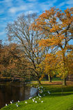 Autumn in the park, Denmark Royalty Free Stock Photography