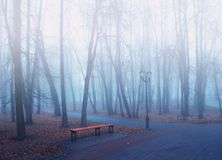 Autumn park in dense fog - foggy park with fallen autumn leaves and bench near the bare trees. Autumn foggy landscape Royalty Free Stock Photography