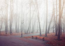 Autumn park in dense fog - lonely bench under the bare autumn trees among the fallen red leaves. Cold tones processing. Autumn park in dense fog - lonely bench Stock Image