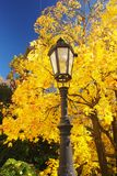 Autumn in the park. Detail the historical lamps in autumn park Stock Photos
