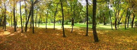 Autumn in Park 'Dubovaya Rosha' Royalty Free Stock Images