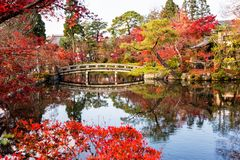 Autumn park at Eikando temple, Kyoto. Wooden bridge and pond with autumn foliage colors and scenic reflection at Eikando garden temple in Kyoto, Japan Royalty Free Stock Images