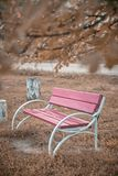 Bench in the park. Beautiful place. Autumn landscape stock photos