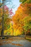 Autumn Park Entrance Fotografia Stock Libera da Diritti