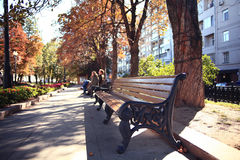Autumn park footpath Stock Image