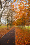 Autumn park footpath Royalty Free Stock Images