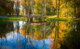 Autumn in the park. Autumn in the forest by a lake with a bridge over Stock Image