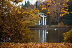 Autumn and park Royalty Free Stock Photography