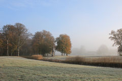 Autumn in park with frost and morning mist Stock Photo