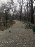 Autumn park garden with benches in Kiev. Sadness, melancholy, despondency and benches. Such is my autumn in the botanical garden of the most beautiful city of Stock Photography